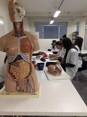 Alunos do 8º ano participam de aula sobre Sistema Respiratório