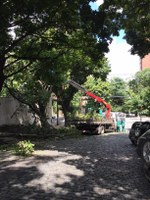 Colégio altera local de saída dos alunos nesta quinta-feira, devido a interdição na rua Alvarenga Peixoto