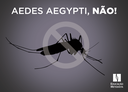 Colégio Metodista Izabela Hendrix entra na luta contra o mosquito Aedes aegypti